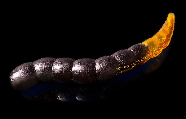 Jara Bufworm 45 - Color #214