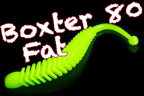 Boxter Fat 80