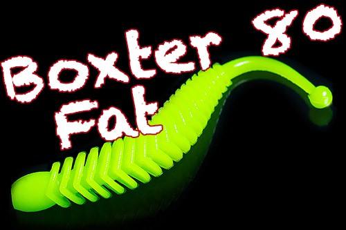 Boxter Fat 80