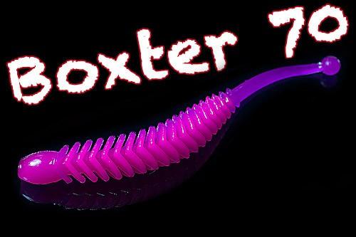 Boxter 70